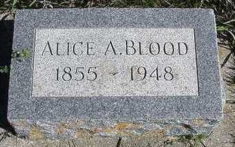 BLOOD, ALICE A. - Sioux County, Iowa   ALICE A. BLOOD