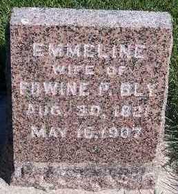 BLY, EMMELINE (MRS. EDWINE P.) - Sioux County, Iowa | EMMELINE (MRS. EDWINE P.) BLY