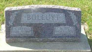 BOLLUYT, BERT - Sioux County, Iowa   BERT BOLLUYT