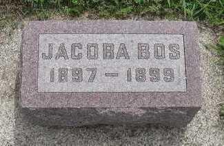 BOS, JACOBA - Sioux County, Iowa | JACOBA BOS