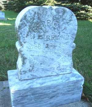 BRANDS, GERRIT J. - Sioux County, Iowa | GERRIT J. BRANDS