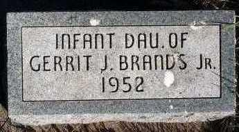 BRANDS, INFANT DAUGHTER OF GERRIT J. JR. - Sioux County, Iowa | INFANT DAUGHTER OF GERRIT J. JR. BRANDS