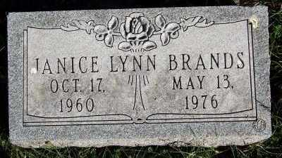 BRANDS, JANICE LYNN - Sioux County, Iowa | JANICE LYNN BRANDS
