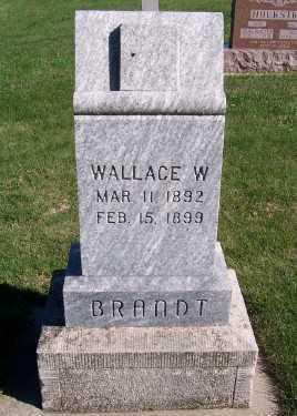 BRANDT, WALLACE W. - Sioux County, Iowa | WALLACE W. BRANDT