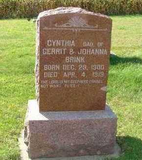 BRINK, CYNTHIA - Sioux County, Iowa | CYNTHIA BRINK