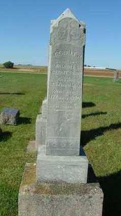 BRINK, GERRIT J. - Sioux County, Iowa   GERRIT J. BRINK