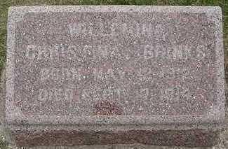 BRINKS, WILLEMINA CHRISTINA - Sioux County, Iowa   WILLEMINA CHRISTINA BRINKS