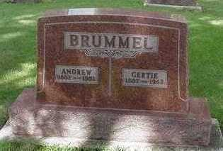 BRUMMEL, ANDREW - Sioux County, Iowa | ANDREW BRUMMEL