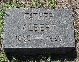 BRUNSTING, ALBERT  D.1929 - Sioux County, Iowa   ALBERT  D.1929 BRUNSTING