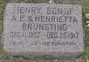 BRUNSTING, HENRY - Sioux County, Iowa | HENRY BRUNSTING
