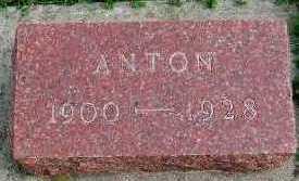 DAHL, ANTON - Sioux County, Iowa | ANTON DAHL