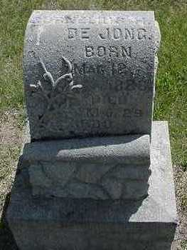 DEJONG, CORNELIUS H. - Sioux County, Iowa   CORNELIUS H. DEJONG