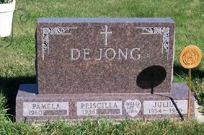 DEJONG, JULIUS - Sioux County, Iowa | JULIUS DEJONG