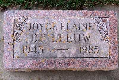 DELEEUW, JOYCE ELAINE - Sioux County, Iowa   JOYCE ELAINE DELEEUW