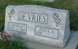 DEVRIES, JOYCE A. - Sioux County, Iowa | JOYCE A. DEVRIES