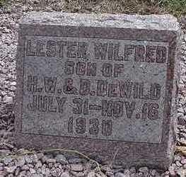 DEWILD, LESTER WILFRED - Sioux County, Iowa | LESTER WILFRED DEWILD