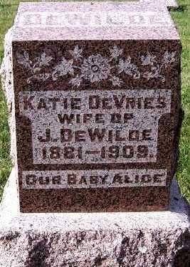DEWILDE, ALICE - Sioux County, Iowa   ALICE DEWILDE
