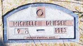 DRIESEN, MICHELLE - Sioux County, Iowa | MICHELLE DRIESEN
