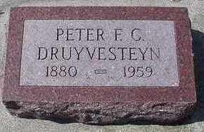 DRUYVESTEYN, PETER F. C. - Sioux County, Iowa | PETER F. C. DRUYVESTEYN