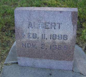 ERICKSON, ALBERT - Sioux County, Iowa | ALBERT ERICKSON