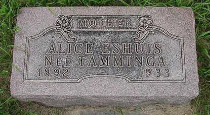 TAMMINGA ESHUIS, ALICE - Sioux County, Iowa | ALICE TAMMINGA ESHUIS