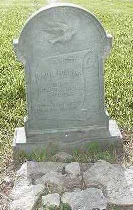 FOLGER, PAUL - Sioux County, Iowa | PAUL FOLGER