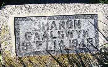 GAALSWYK, SHARON - Sioux County, Iowa | SHARON GAALSWYK