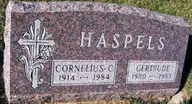 HASPELS, CORNELIUS - Sioux County, Iowa | CORNELIUS HASPELS