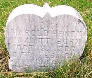 HAZLITT, HAROLD HENRY - Sioux County, Iowa   HAROLD HENRY HAZLITT