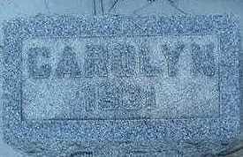 HOLLENBECK, CAROLYN - Sioux County, Iowa   CAROLYN HOLLENBECK