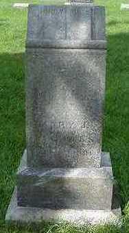 HOLMES, MARY J. (MRS. J. - Sioux County, Iowa | MARY J. (MRS. J. HOLMES