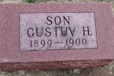 KOCK, GUSTAV H. - Sioux County, Iowa | GUSTAV H. KOCK