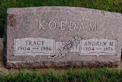 KOEDAM, TRACY - Sioux County, Iowa | TRACY KOEDAM