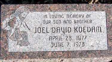 KOEDAM, JOEL DAVID - Sioux County, Iowa | JOEL DAVID KOEDAM