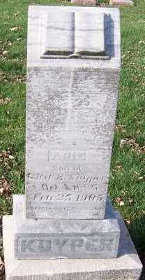 KUYPER, ARIE (SON OF G.B.&E.) - Sioux County, Iowa | ARIE (SON OF G.B.&E.) KUYPER