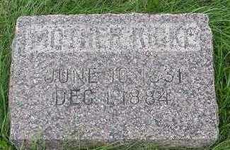 LEMKE, RIGKE  D.1884 - Sioux County, Iowa | RIGKE  D.1884 LEMKE