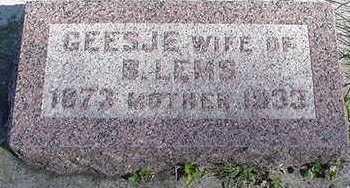 LEMS, GEESJE (MRS. B.) - Sioux County, Iowa | GEESJE (MRS. B.) LEMS