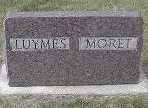 LUYMES, HEADSTONE - Sioux County, Iowa | HEADSTONE LUYMES