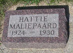MALIPAARD, HATTIE - Sioux County, Iowa | HATTIE MALIPAARD