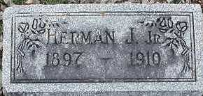 MANDELKOW, HERMAN J. JR. - Sioux County, Iowa   HERMAN J. JR. MANDELKOW