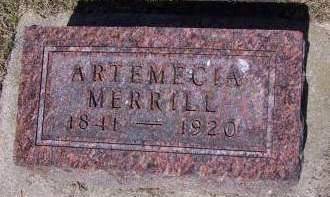 MERRILL, ARTEMECIA - Sioux County, Iowa | ARTEMECIA MERRILL
