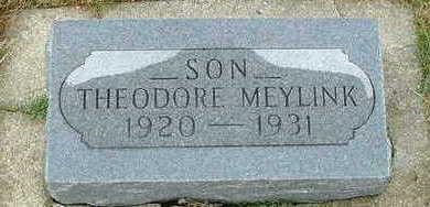 MEYLINK, THEODORE - Sioux County, Iowa | THEODORE MEYLINK