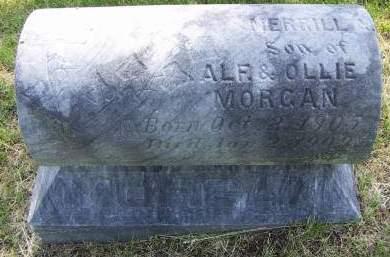 MORGAN, MERRILL - Sioux County, Iowa   MERRILL MORGAN