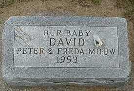 MOUW, DAVID - Sioux County, Iowa | DAVID MOUW