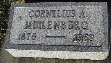 MUILENBURG, CORNELIUS A. - Sioux County, Iowa   CORNELIUS A. MUILENBURG