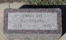 MUILENBURG, CAROL LEE - Sioux County, Iowa   CAROL LEE MUILENBURG