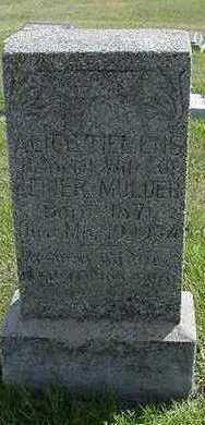 TIEMENS MULDER, ALICE (MRS. REIJER) - Sioux County, Iowa | ALICE (MRS. REIJER) TIEMENS MULDER