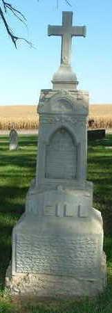 NEILL, FRANCIS P. - Sioux County, Iowa | FRANCIS P. NEILL