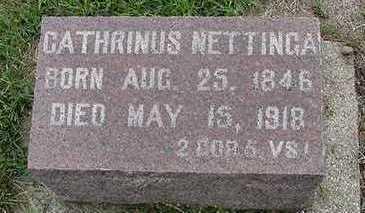 NETTINGA, CATHRINUS - Sioux County, Iowa | CATHRINUS NETTINGA