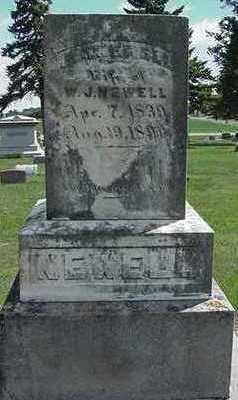 NEWELL, E. A. - Sioux County, Iowa   E. A. NEWELL